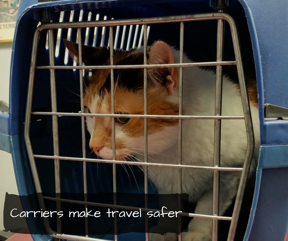 Carriers make travel safe