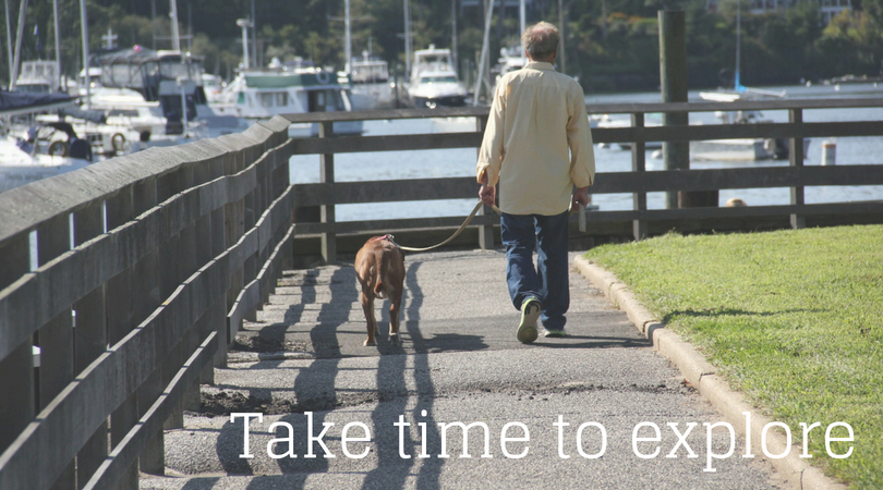 Dogs should walk, sniff, and explore each day