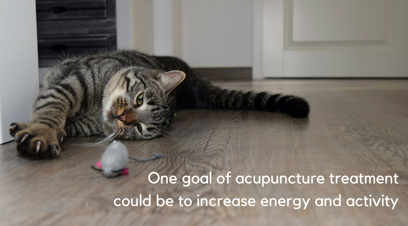 One goal of acupuncture is to increase energy and activity