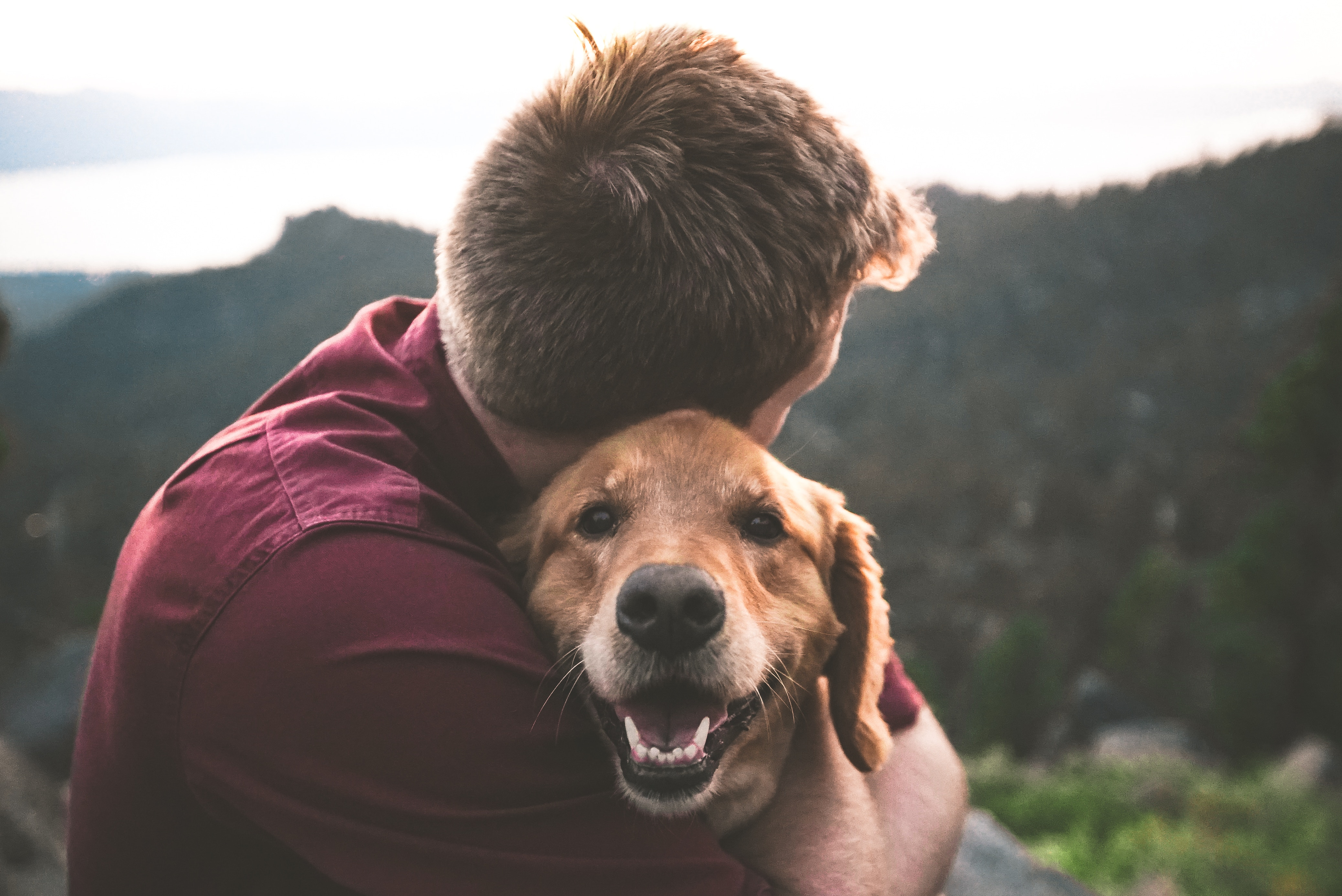 As veterinary medicine continues to advance, companion animals are living longer than ever—and pet insurance is a great way to ensure you can provide the care yours will need along the way.