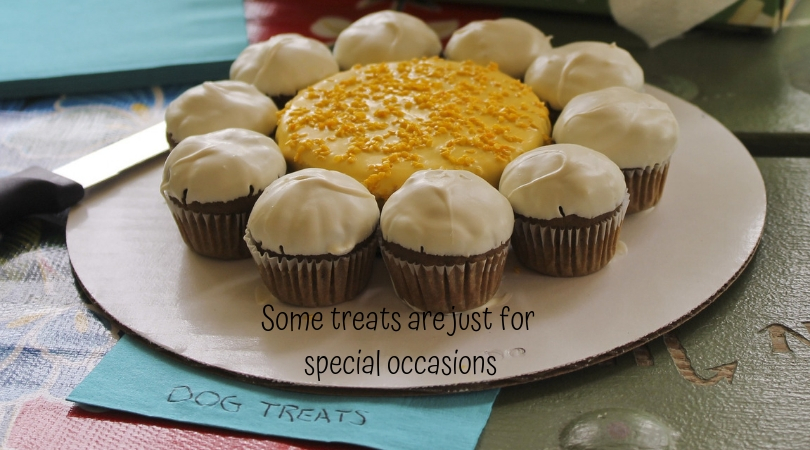 """Photo of special occasion dog treat """"pupcakes"""""""
