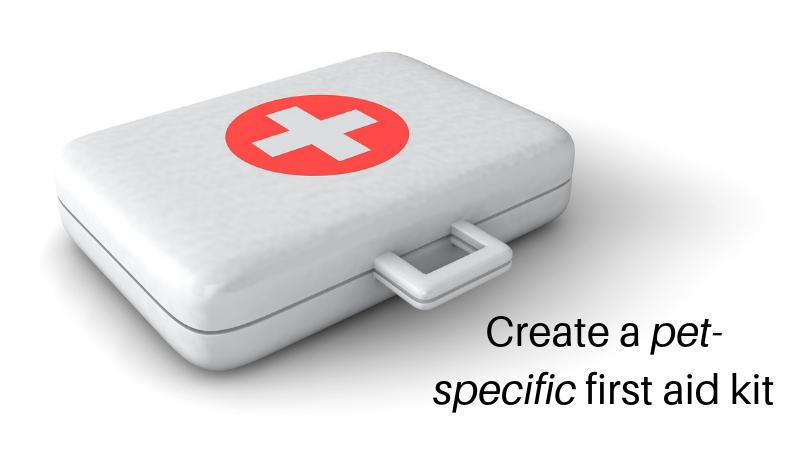 Photo of a first aid kit