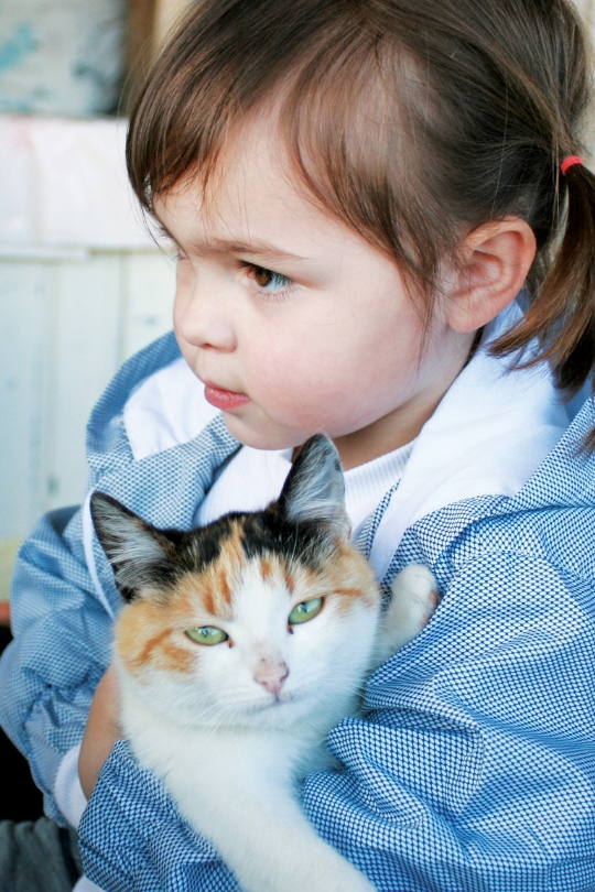 Photo of a cat in a young girl's arms