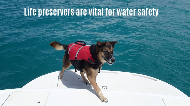 Photo of a dog wearing a life preserver while on a boat