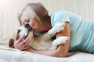 how to know if pets are at end of life