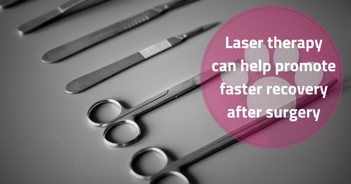 Laser therapy can hasten surgical recovery
