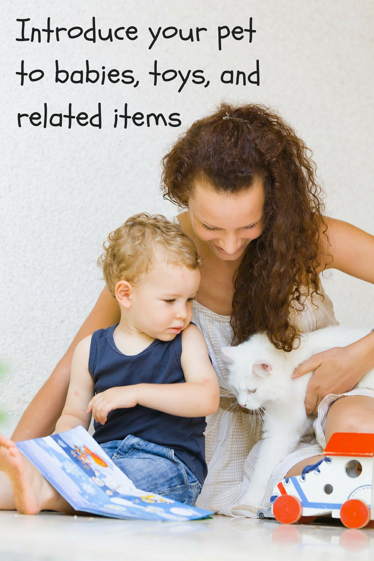 Introduce your pet to babies, toys, and related items