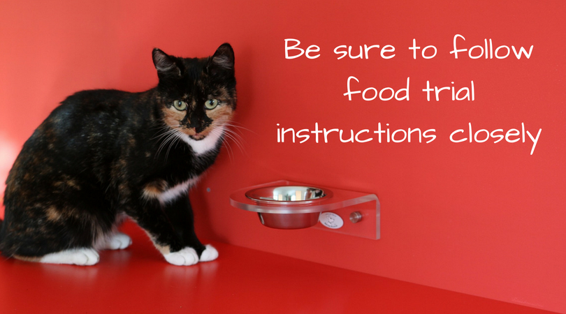 Be sure to follow food trial instructions closely