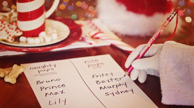 Santa's Naughty and Nice List for pets