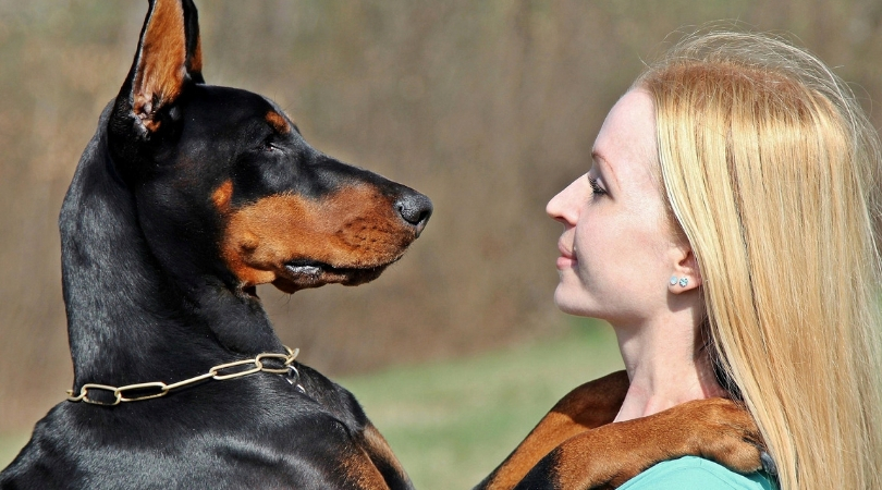 Photo of woman with Doberman's paws on shoulders, like a hug