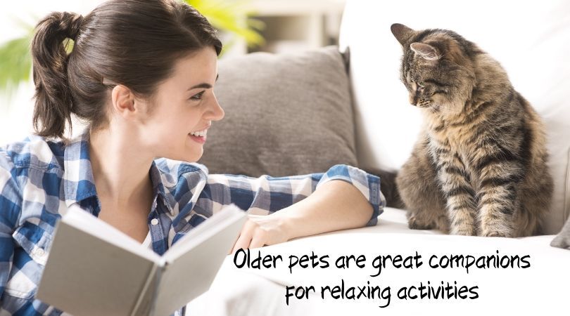 Woman reading book next to cat