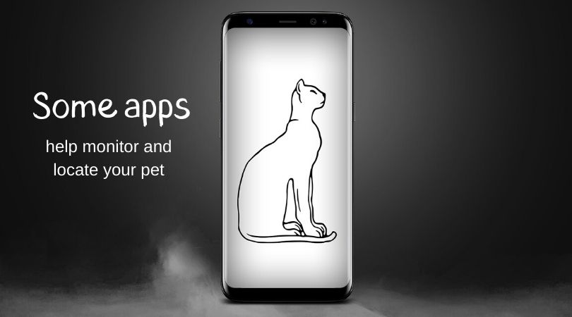 A graphic of a cat on a smartphone screen