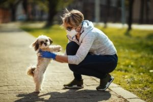 pets help mental health isolation
