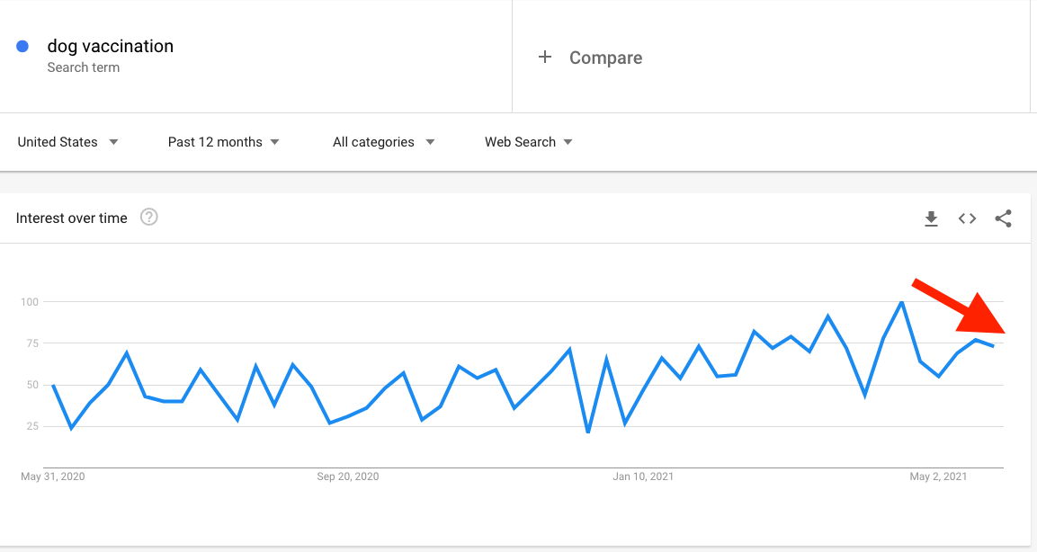dog vaccination google searches